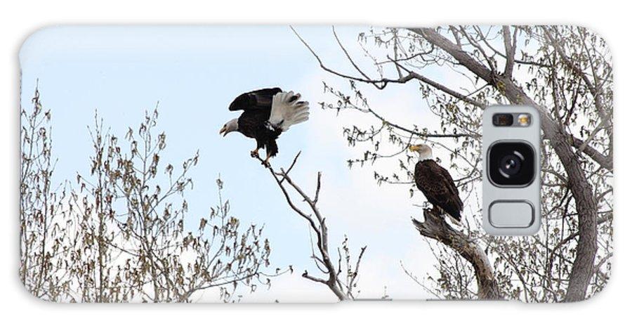 Bald Eagle Galaxy S8 Case featuring the photograph Bald Eagles by Lori Tordsen
