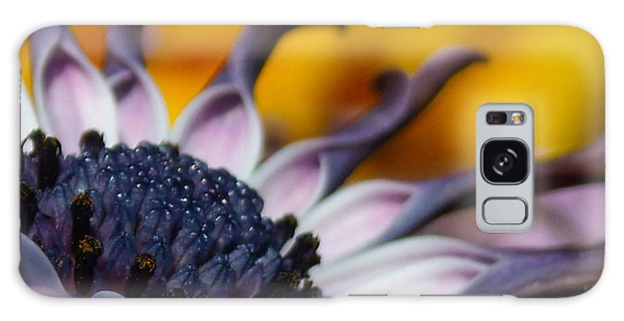 Flower Galaxy S8 Case featuring the photograph Beautiful by Line Gagne