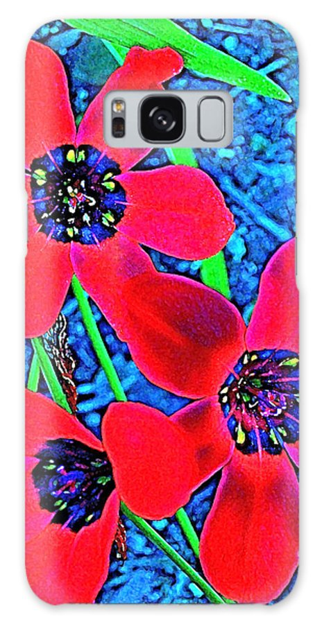 Flowers Galaxy S8 Case featuring the photograph Color 1 by Pamela Cooper