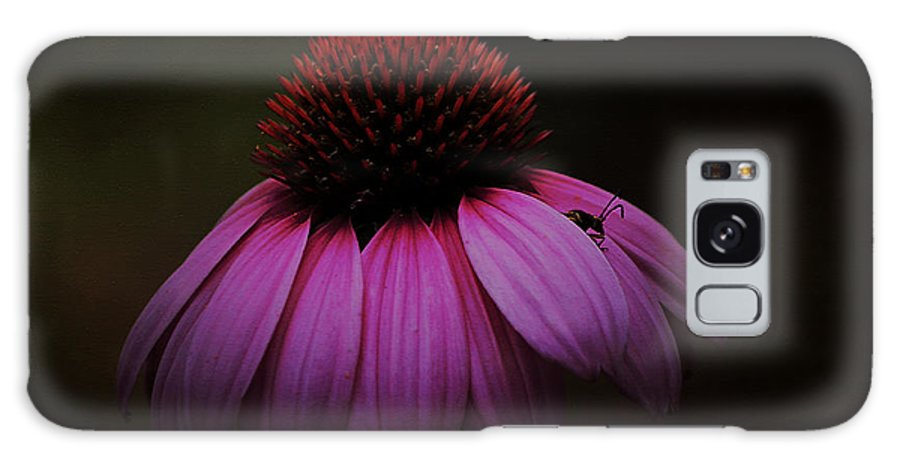 Coneflower Galaxy S8 Case featuring the photograph Emerge by Ola Allen