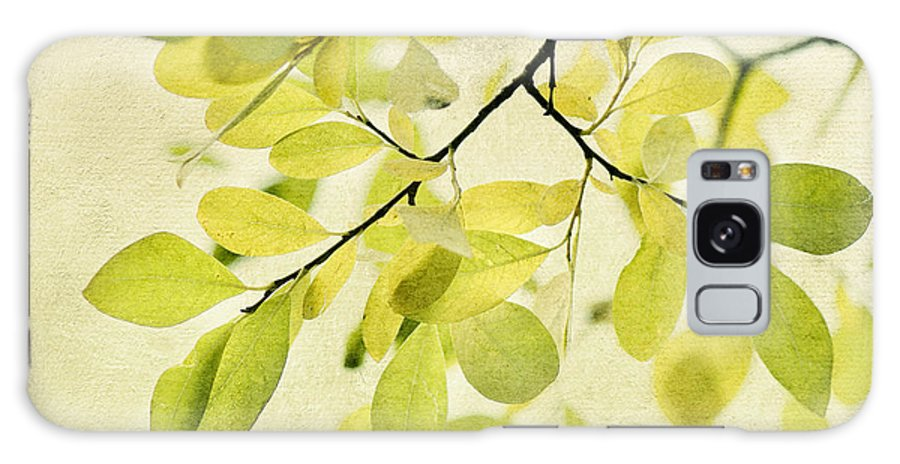 Foliage Galaxy Case featuring the photograph Green Foliage Series by Priska Wettstein