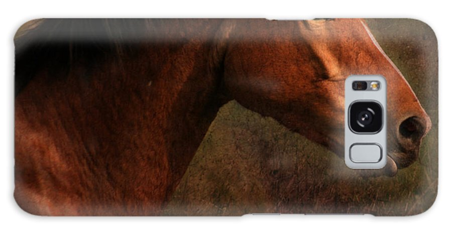 Horse Galaxy S8 Case featuring the photograph Horse Portrait by Angel Ciesniarska