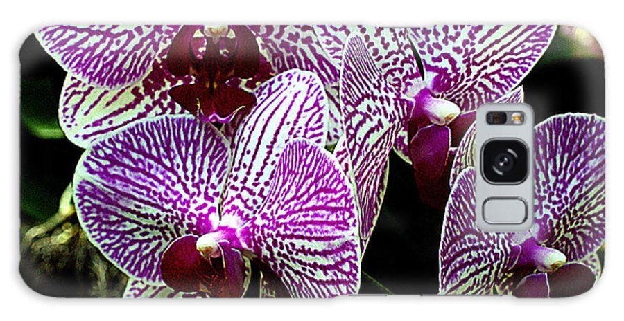 Orchid Galaxy S8 Case featuring the photograph Orchid by Sandra Flickstein