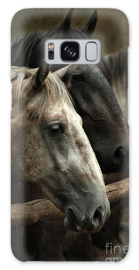 Horse Galaxy S8 Case featuring the photograph Over The Fence by Angel Ciesniarska
