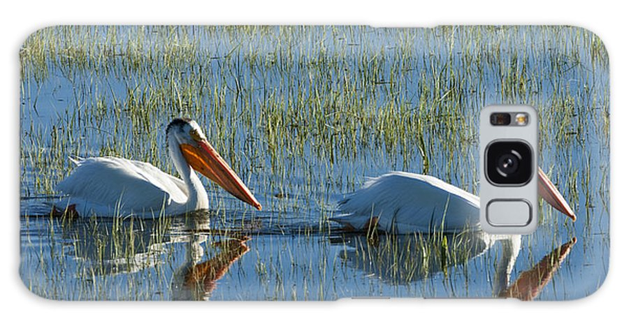 Birds Galaxy S8 Case featuring the photograph Pelicans In Hayden Valley by Sandra Bronstein