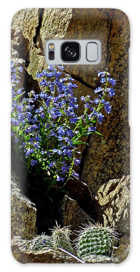 Wildflower Photography Galaxy S8 Case featuring the photograph Persistence by George Tuffy