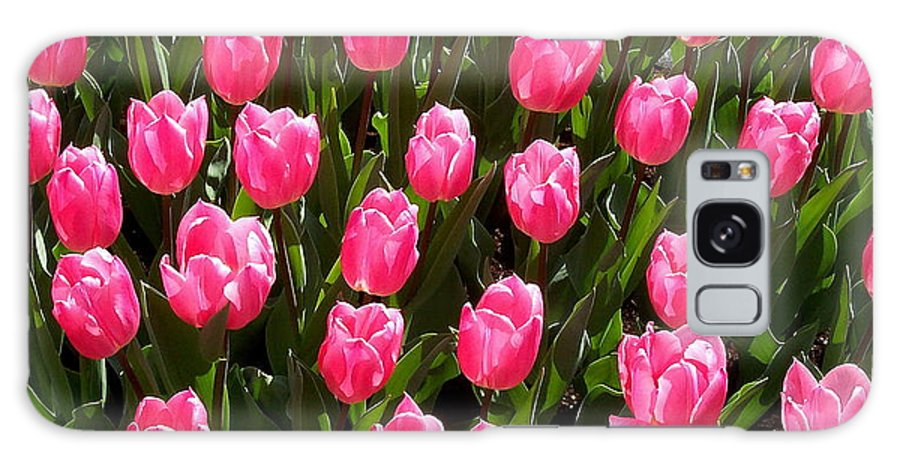 Flower Galaxy S8 Case featuring the photograph Pink Tulips by Glenn Aker