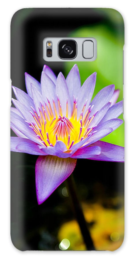 Flowers Galaxy S8 Case featuring the photograph Purple Lotus by Raimond Klavins