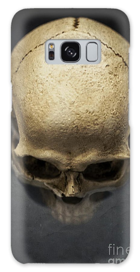 Skull Galaxy S8 Case featuring the photograph Skull by Edward Fielding