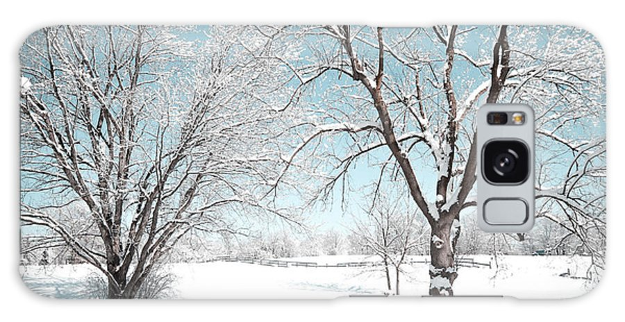 Rochester Galaxy S8 Case featuring the photograph Snowy Trees On The Erie Canal by Meegan Streeter