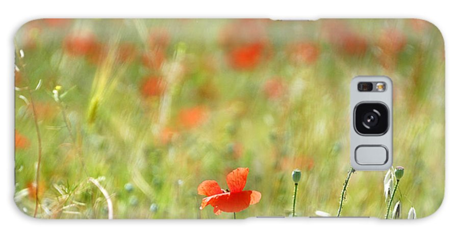 Landscape Galaxy S8 Case featuring the photograph The First Poppy Of The Field by Guido Montanes Castillo