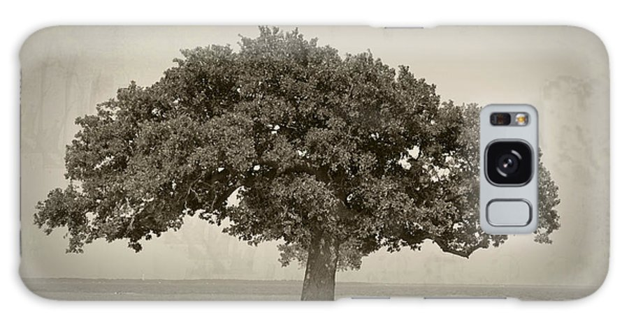 Tree Galaxy S8 Case featuring the photograph The Lonely Tree by Charles Beeler
