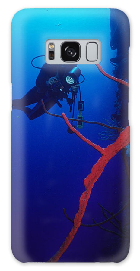 Blood Coral Galaxy S8 Case featuring the photograph The Silent World by Carl Purcell