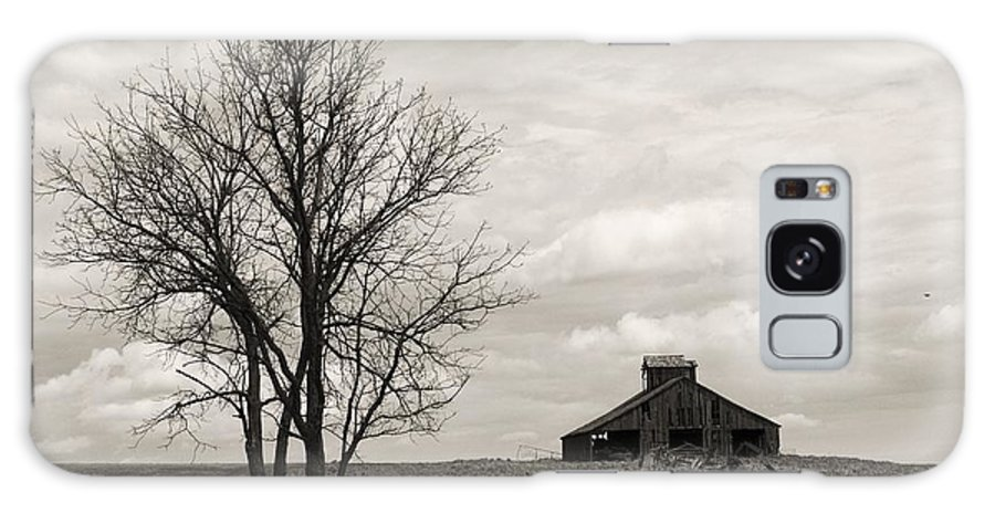 Lone Barn Galaxy S8 Case featuring the photograph 2 Tree Barn by Ransom Williams