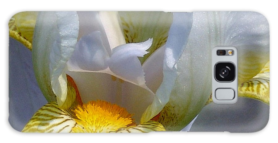 White And Yellow Galaxy S8 Case featuring the photograph White And Yellow Iris 2 by David Hohmann