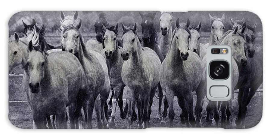 Horse Galaxy S8 Case featuring the photograph White Horses by Angel Ciesniarska