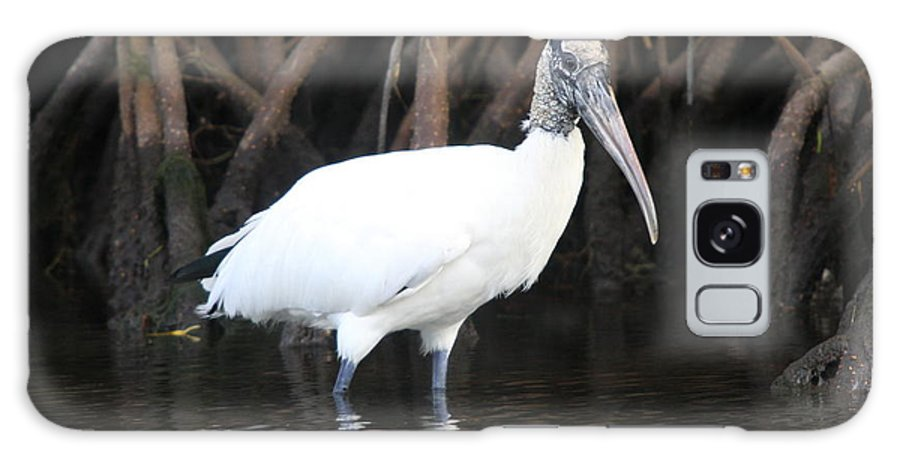 Wood Stork Galaxy S8 Case featuring the photograph Wood Stork In The Swamp by Christiane Schulze Art And Photography