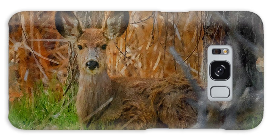 Big Ears Galaxy S8 Case featuring the digital art Young Mulie by Ernie Echols
