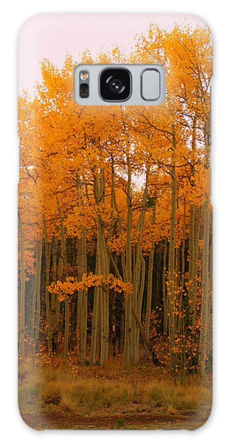 Aspens Over Hoosier Pass Galaxy S8 Case featuring the photograph 2011 Rocky Mountain Aspens II by Jacqueline Russell