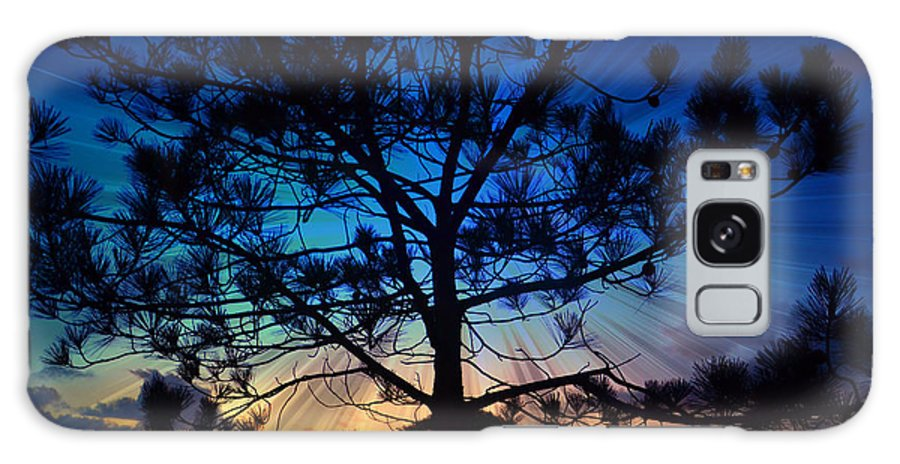 Pine Tree Galaxy S8 Case featuring the photograph 2nd Day Of Christmas by Sharon Tate Soberon