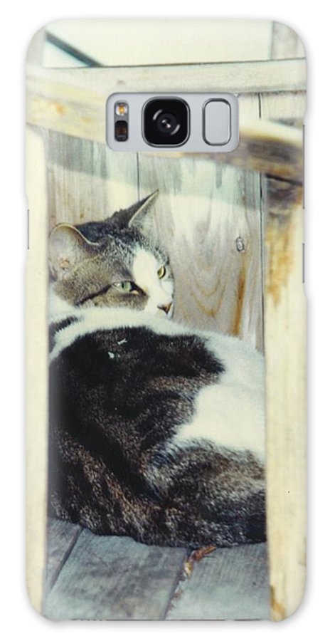 Framed By A Box Galaxy S8 Case featuring the photograph Emmie by Robert Floyd