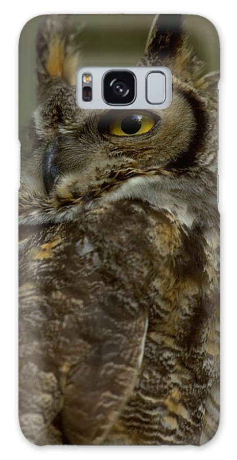 Animalia Galaxy S8 Case featuring the photograph Great Horned Owl by Don Baccus