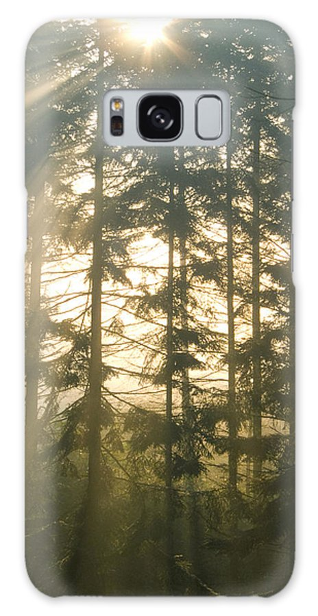 Nature Galaxy Case featuring the photograph Light In The Forest by Daniel Csoka