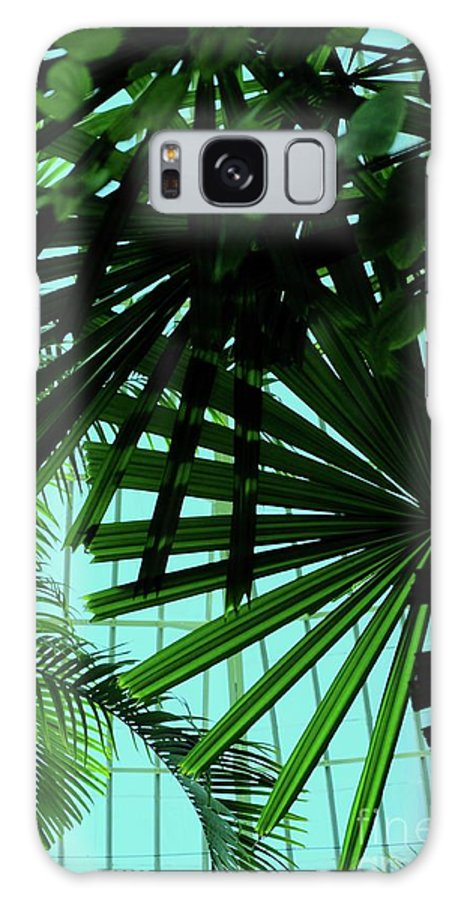 Palm Galaxy S8 Case featuring the photograph Palm Trees by Kathleen Struckle