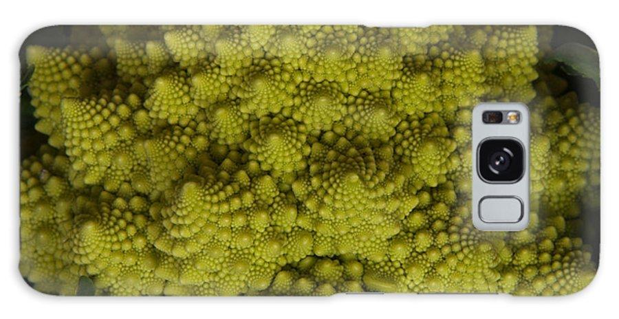Vegetable Galaxy S8 Case featuring the photograph Romanesco - Italian Broccoli by Frank Gaertner