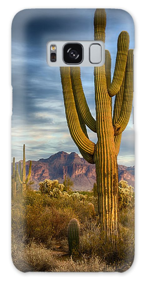 Arizona Galaxy S8 Case featuring the photograph Standing Tall by Saija Lehtonen