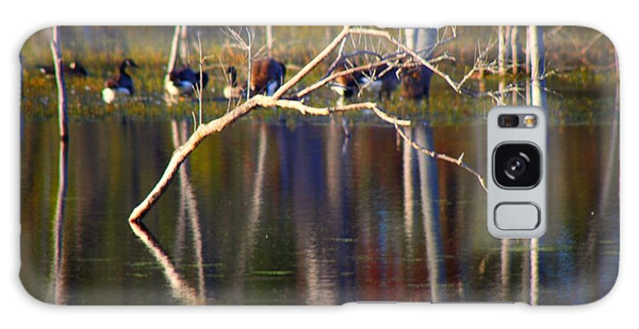 Galaxy S8 Case featuring the photograph Autumn 2013 by Chet B Simpson