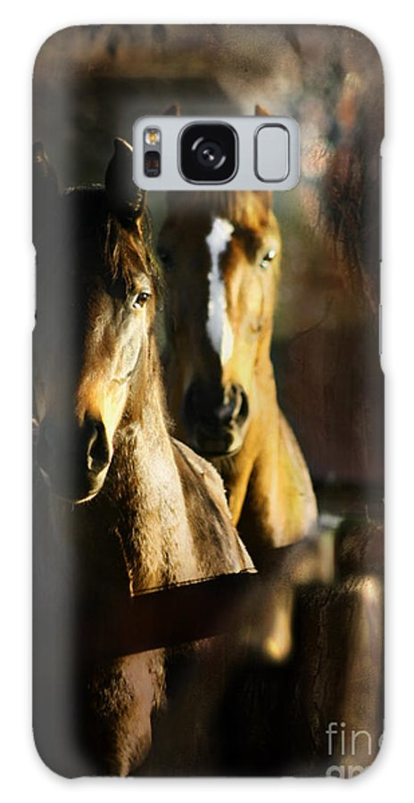 Horse Galaxy S8 Case featuring the photograph Autumn Colors by Angel Ciesniarska