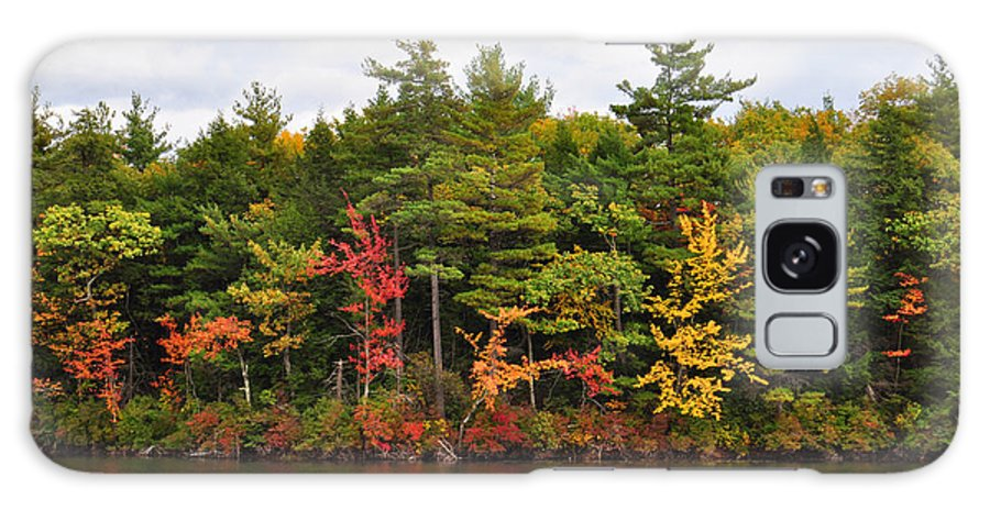 Autumn Galaxy S8 Case featuring the photograph Fall Foliage In New England by Staci Bigelow