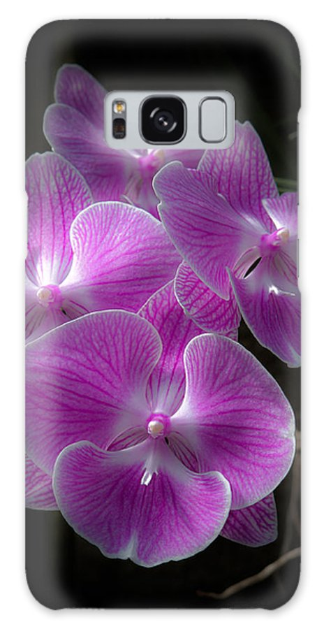 Flower Galaxy S8 Case featuring the photograph Orchid Dream by Paul Slebodnick