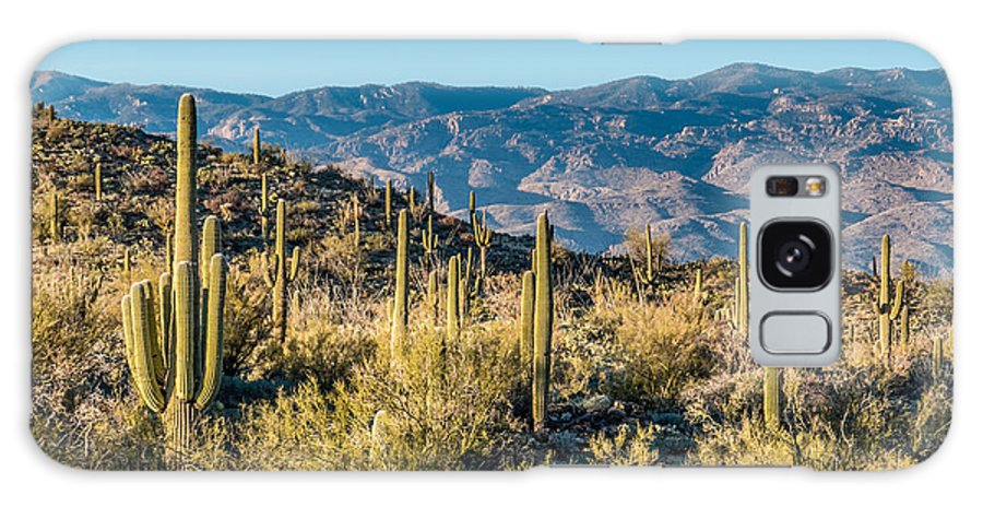 Cactus Galaxy S8 Case featuring the photograph Saguaro Cactus by Wolfgang Hauerken