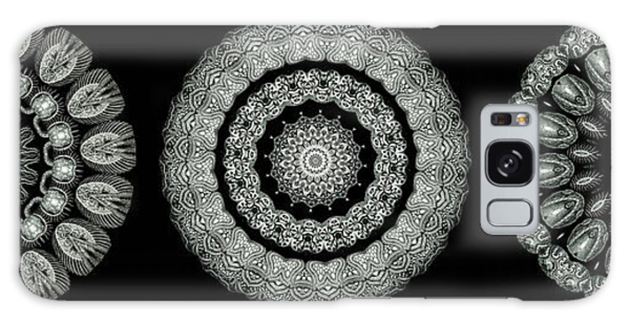 Ernst Haeckel Galaxy S8 Case featuring the photograph Kaleidoscope Ernst Haeckl Sea Life Series Black And White Set On by Amy Cicconi