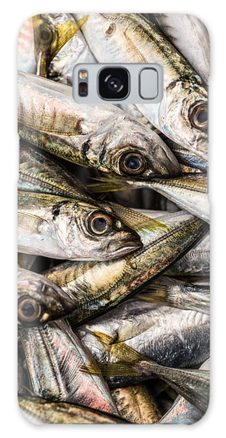 Fish Market Galaxy S8 Case featuring the photograph Tile Of Fishes by Dobromir Dobrinov