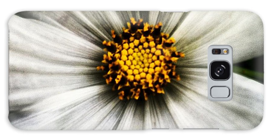 Flower Galaxy S8 Case featuring the photograph 50 Shades Of Flower by Jessica Coyle