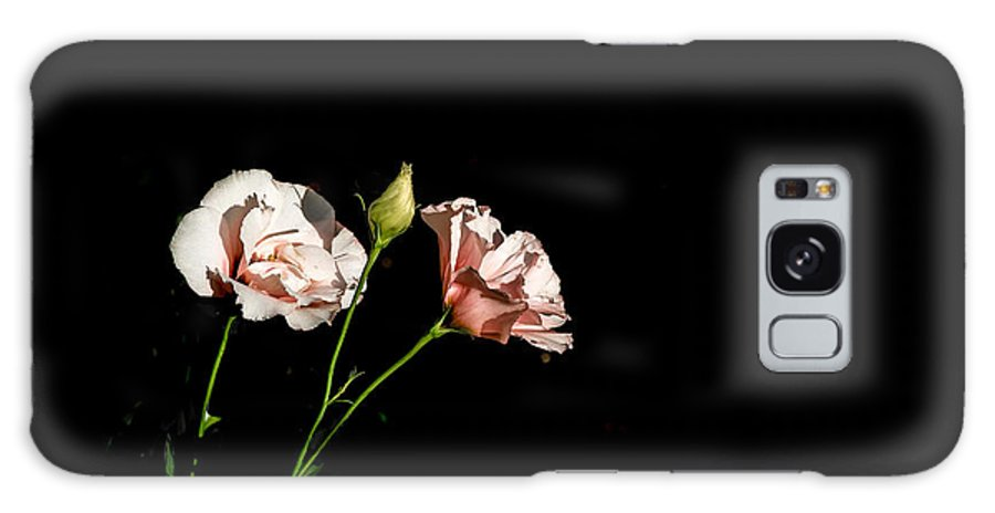 Flowers Galaxy S8 Case featuring the photograph Flower by Tinjoe Mbugus