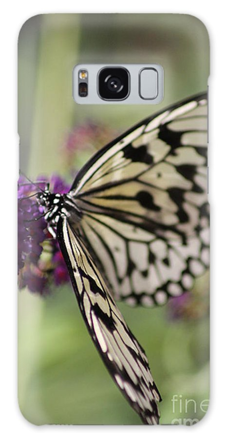 Butterfly Galaxy S8 Case featuring the photograph Butterfly by Diane Greco-Lesser