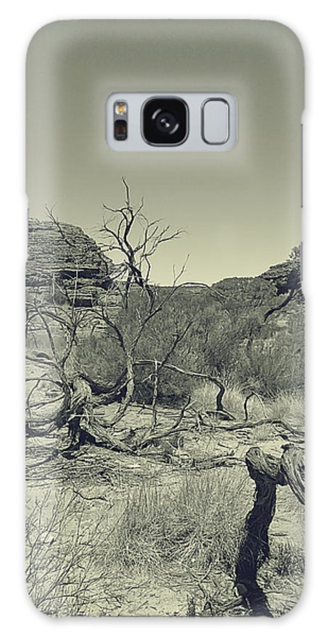 Dead Tree Galaxy S8 Case featuring the photograph Dead Tree by Girish J