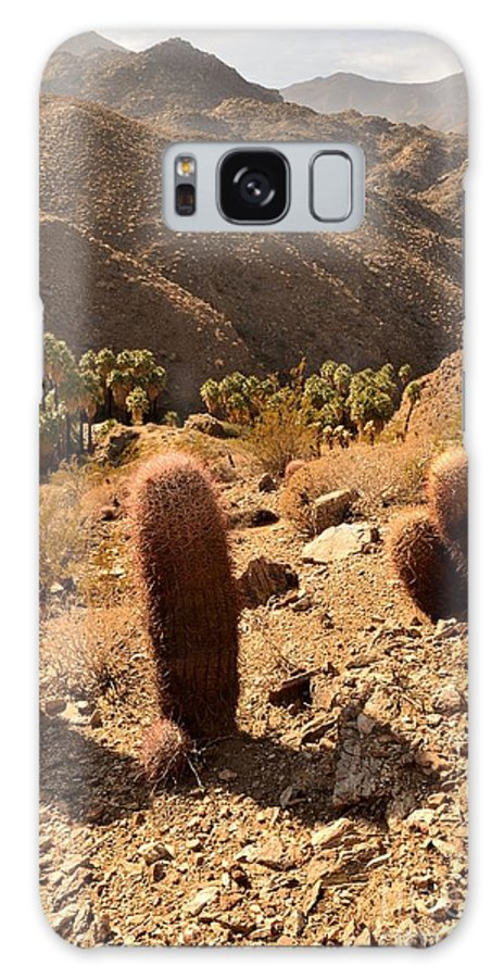 Indian Canyons Galaxy S8 Case featuring the photograph Indian Canyons by Yinguo Huang