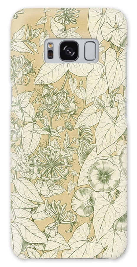 Ornament; Ornamentation; Design; Pattern; Historical; Plates; Leaves; Nature; Botany; Botanical; Leaf; Natural Galaxy S8 Case featuring the painting Leaves From Nature by English School