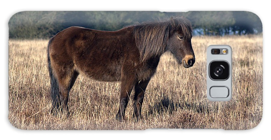New Forest Pony Galaxy S8 Case featuring the photograph New Forest Pony by Chris Day