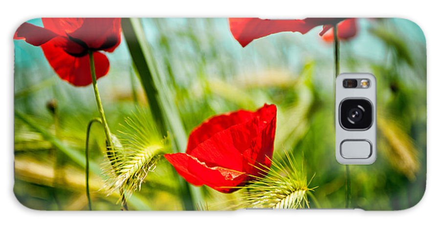 Field Galaxy S8 Case featuring the photograph Poppy Field And Sky by Raimond Klavins