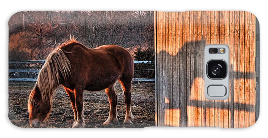 2014 Galaxy S8 Case featuring the photograph 7056 Horse Shadow by Deidre Elzer-Lento