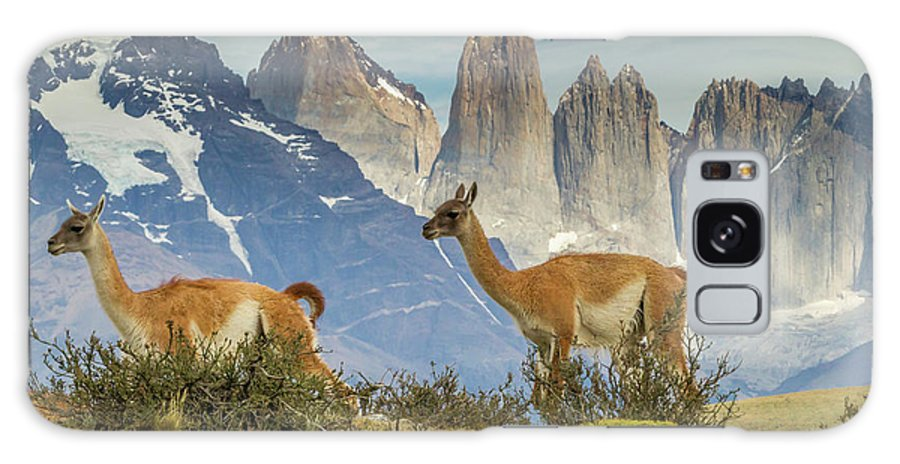 Cathy And Gordon Illg Galaxy S8 Case featuring the photograph South America, Chile, Patagonia, Torres by Jaynes Gallery