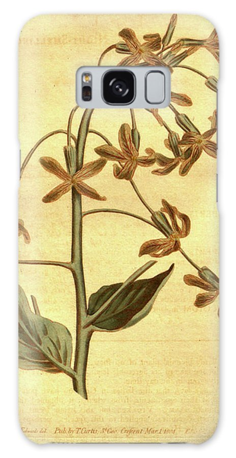 Botanical Galaxy S8 Case featuring the drawing Botanical Print By Sydenham Teast Edwards 1768 – 1819 by Quint Lox