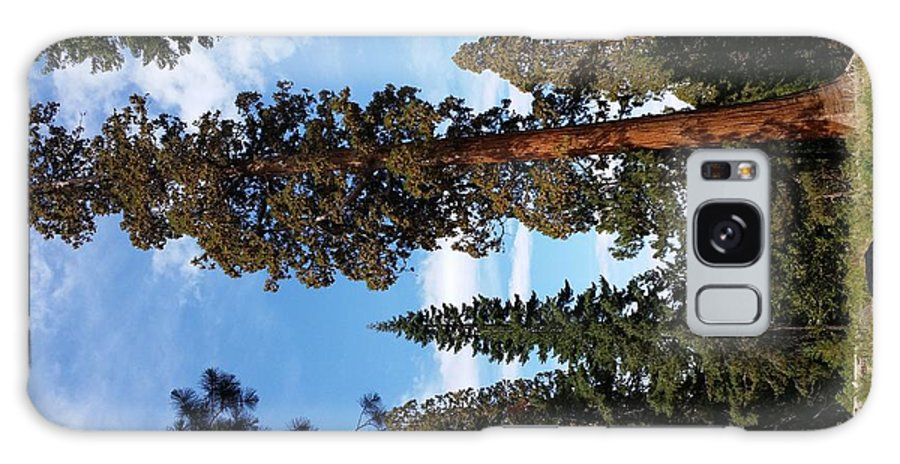 Scenery Galaxy S8 Case featuring the photograph A California Sight by Melissa Harvey