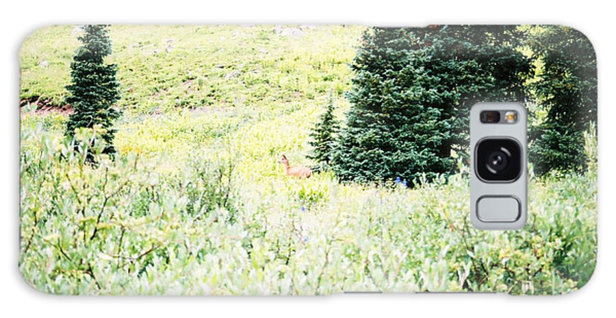 Hiding In The Tundra Galaxy S8 Case featuring the photograph A Deer Hiding In The Tundra by Jennifer Lavigne